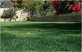 Wide Range of Synthetic Grass